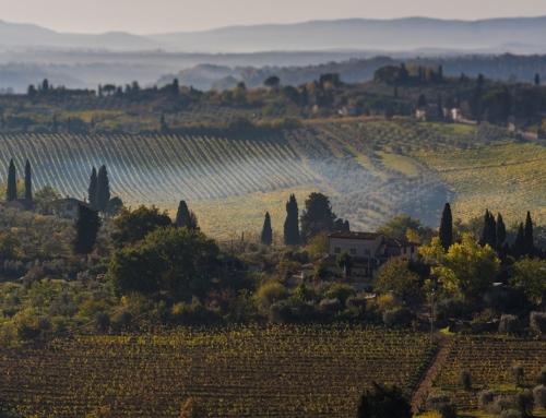 Toscana & Cinque Terre
